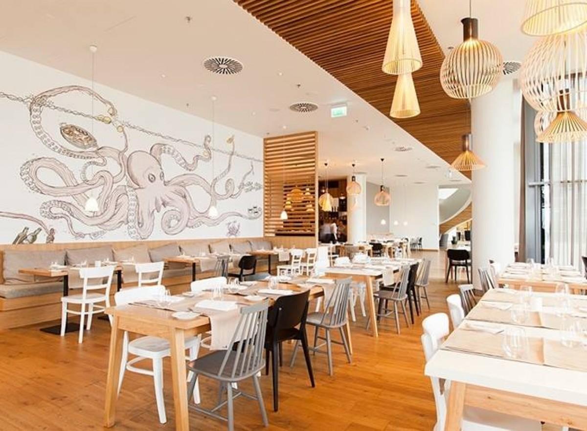 Pin Nieuwe Horeca Restaurant Stoel Mirjam In Div Kleuren Kijk Nu on ...